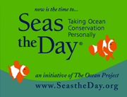 Seas The Day_Graphic